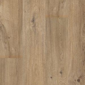PVC Rigid Click Floorify Teddy Bear F102